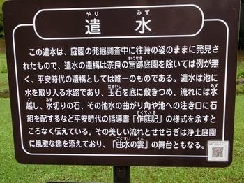 毛越寺29.JPG