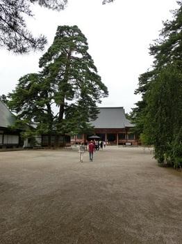 毛越寺6.JPG